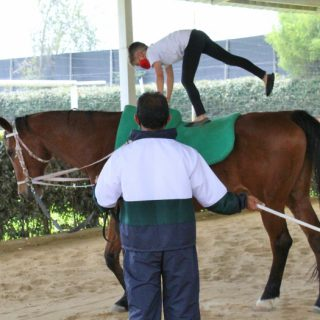 Vaulting-Guilford